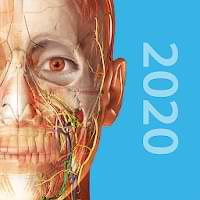 Human Anatomy Atlas 2020